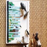 Animalia, the beautiful pop-up book for children